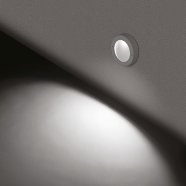 Koi 120 2700 wandlamp