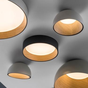 Duo 4876 plafondlamp
